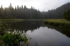 Um lago da montanha A névoa nas montanhas, cenário nevoento da manhã fantástica, montes cobriu a floresta da faia, Ucrânia, Carpa fotografia de stock royalty free