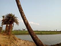 Um lago nos campos Imagens de Stock