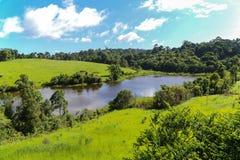 Um lago pequeno imagem de stock royalty free