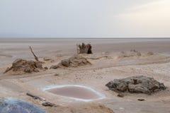 Um lago pequeno da água salgado no EL seco Djerid de Chott do lago de sal, Tunísia, África fotos de stock royalty free