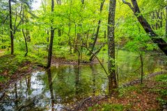 Um lago pequeno dentro da floresta no tempo do outono/nos lagos Croa Plitvice imagens de stock
