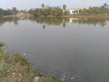 Um lago pequeno do campo Imagem de Stock