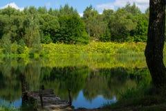 Um lago pequeno na floresta Foto de Stock Royalty Free