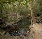 Um lago pequeno no parque velho Imagens de Stock Royalty Free