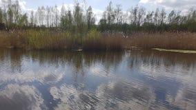 Um lago perto dos montes de Arkenberge no norte de Berlim na mola imagens de stock