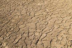Um lago seco em horas de verão foto de stock royalty free