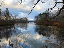 Um lago, uma reflexão, um céu azul e a árvore Imagem de Stock