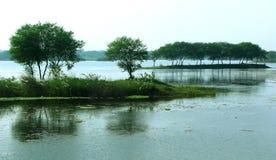 Um landcape rural do lago com árvores da reflexão Fotografia de Stock Royalty Free