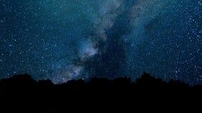 Um lapso de tempo de uma noite estrelado com uma sombra de uma árvore no primeiro plano e com um efeito da fuga da estrela Lapso  vídeos de arquivo