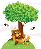 Um leão do rei e os dois pássaros Imagens de Stock Royalty Free