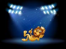 Um leão do rei no centro da fase ilustração stock