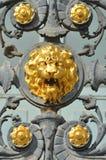 Um leão dourado em uma porta do ferro forjado Fotos de Stock Royalty Free