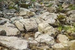 Um leito fluvial com rochas grandes Foto de Stock Royalty Free