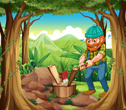 Um lenhador que desbasta as madeiras na floresta perto das rochas Fotos de Stock
