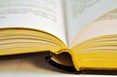Um livro aberto com bordas douradas Fotografia de Stock Royalty Free