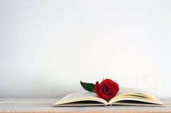 Um livro aberto com uma flor vermelha da rosa nela Fotografia de Stock