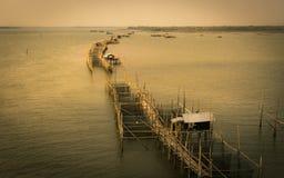 Um log de peixes gigantes na província de Chanthaburi, Tailândia da armadilha fotos de stock royalty free