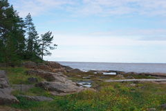 Um lugar pitoresco na costa do mar branco Imagens de Stock
