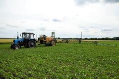 Um método inovativo de crescer o trigo da grão, feijões de soja, milho han imagens de stock royalty free