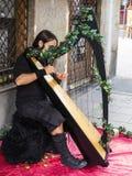 Um músico da rua fotos de stock royalty free
