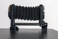 Um macro grita em uma tabela Fotografia de Stock