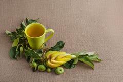 um mag com maçã, um ramo com as maçãs verdes verdes e uma maçã grande do corte encaracolado Foto de Stock Royalty Free