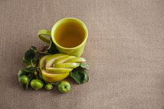 um mag com suco de maçã, um ramo com as maçãs verdes verdes e a uma maçã encaracolado do corte Fotos de Stock Royalty Free
