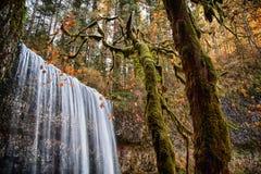 Um mais baixo sul cai no outono, quedas parque estadual da prata, Oregon foto de stock
