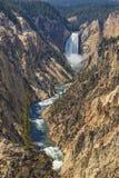 Um mais baixo Yellowstone cai parque nacional Wyoming EUA de Yellowstone Fotos de Stock Royalty Free