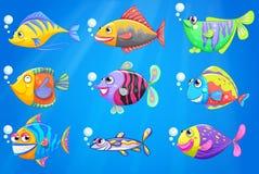 Um mar com uma escola de peixes coloridos Imagem de Stock