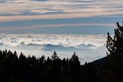 Um mar das nuvens é iluminado atrás da floresta fotos de stock