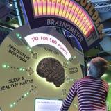 Um menino aprende sobre cérebros no museu do ` s das crianças da descoberta, La Fotografia de Stock