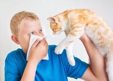 Um menino com alergia de gato Imagens de Stock Royalty Free