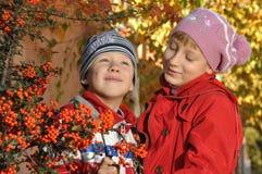Um menino com uma menina perto de Rowan Foto de Stock