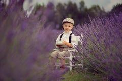 Um menino de sorriso idoso pequeno de quatro anos em um campo da alfazema no dia de verão ensolarado fotos de stock