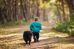 Um menino dos anos de idade com guaxinim Fotografia de Stock Royalty Free