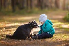 Um menino dos anos de idade com guaxinim Imagens de Stock