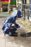 Um menino dos anos de idade 2 que joga na poça Fotos de Stock Royalty Free