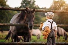 Um menino e um cavalo fotos de stock royalty free