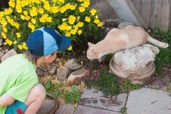Um menino encontra um gato Imagens de Stock