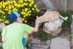 Um menino encontra um gato Imagens de Stock Royalty Free