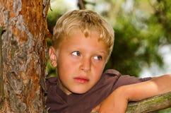 Um menino escala uma árvore Fotografia de Stock
