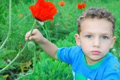 Um menino está papoilas próximas das flores. Imagens de Stock Royalty Free