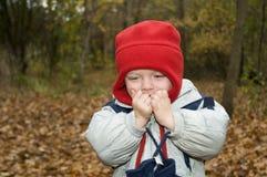 Um menino feliz pequeno com o chapéu vermelho que joga nas folhas imagem de stock