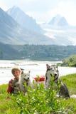 Um menino joga com um cão de puxar trenós do cão Fotografia de Stock