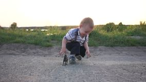 Um menino louro pequeno joga com um brinquedo do cavalo na natureza no por do sol, movimento lento filme