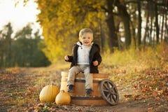 Um menino na floresta do outono fotografia de stock