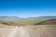 Um menino olha uma estrada do estepe através de um vale em Mongólia, uma águia voa acima dele no céu foto de stock