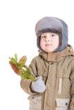 Um menino pensativo no revestimento do inverno com uma filial de f Foto de Stock