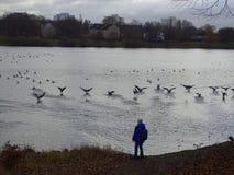 Um menino perto do lago fotografia de stock